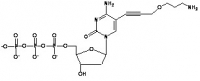 7-amino-(4-oxa-hept-1-inyl)-2'-deoxycytidine-5'-triphosphate (NH2-7-dCTP)